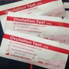 排卵検査薬のラッキーテストの口コミ!使い方や良いタイミングも